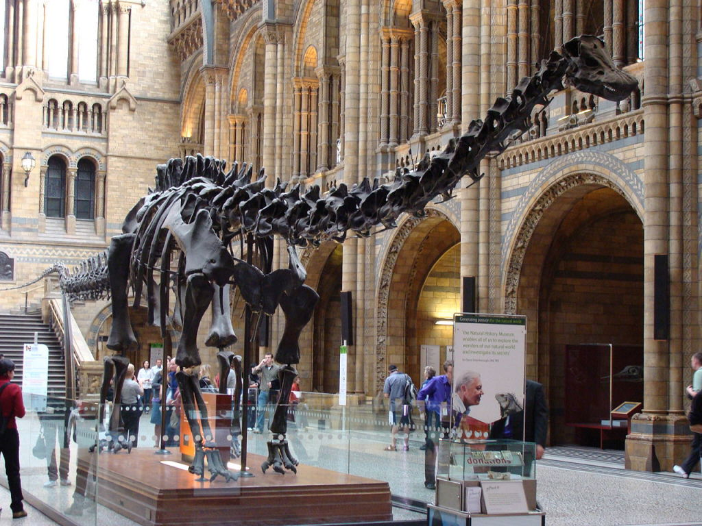 Natural History Museum. Foto: Wikipedia Commons